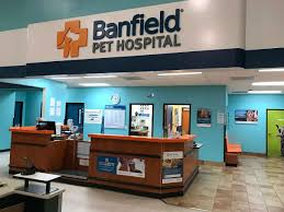 Our lighting help for Banfield Pet Hospital